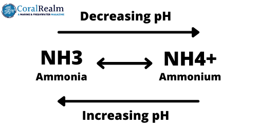 Aquarium Ammonia Ammonium Equilibrium