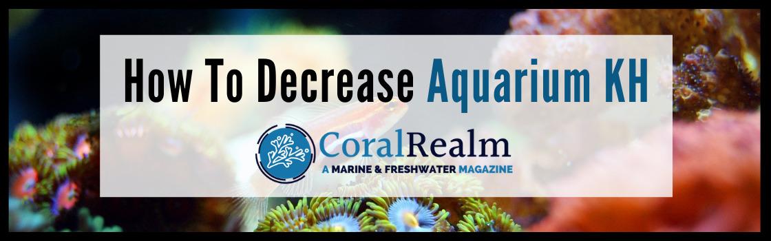 How To Decrease Aquarium KH