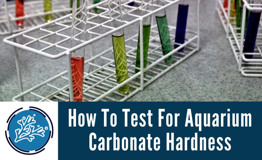 How To Test For Aquarium Carbonate Hardness