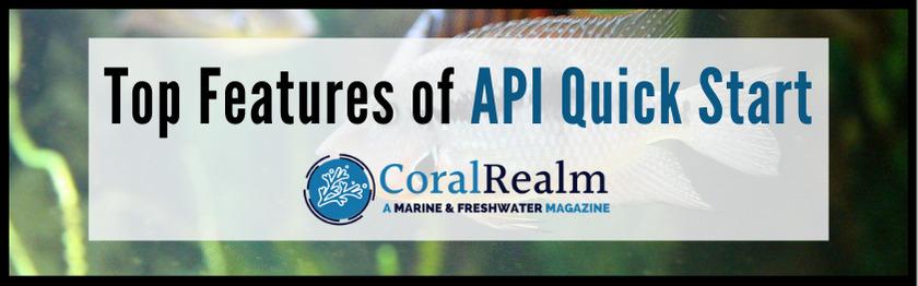 Top Features of API Quick Start