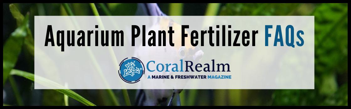 Aquarium Plant Fertilizer FAQs