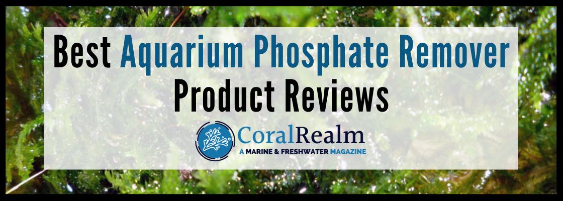 Best Aquarium Phosphate Remover Reviews
