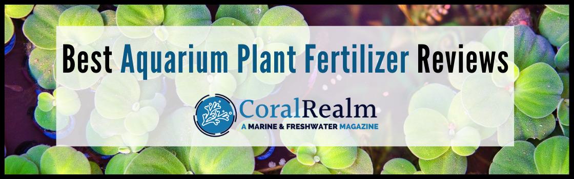 Best Aquarium Plant Fertilizer Reviews