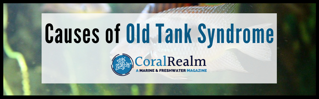 Causes of Old Tank Syndrome