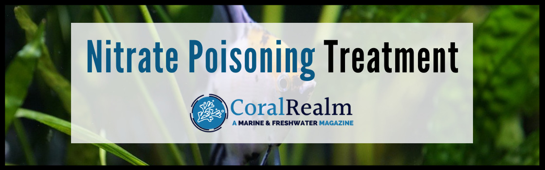 Nitrate Poisoning Treatment