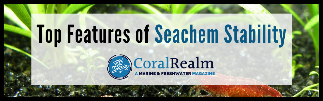 Top Features of Seachem Stability