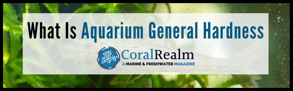 What Is Aquarium General Hardness