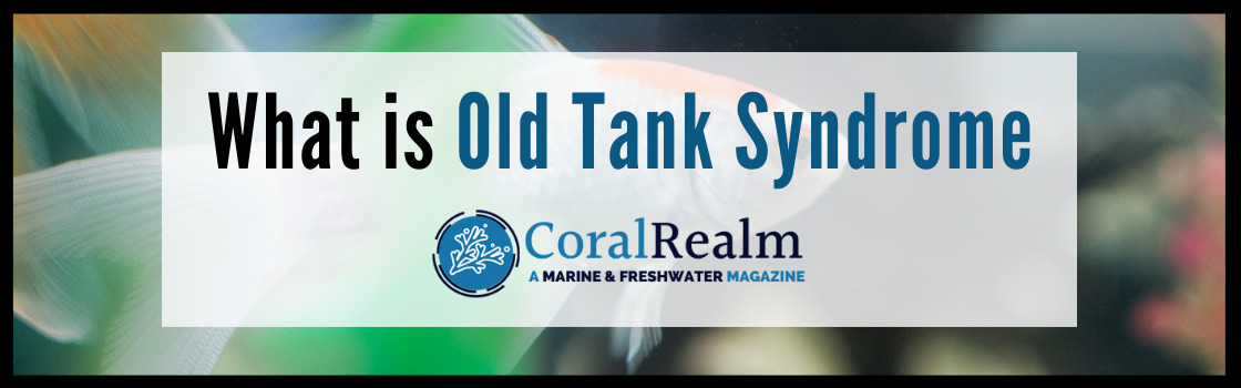 What is Old Tank Syndrome