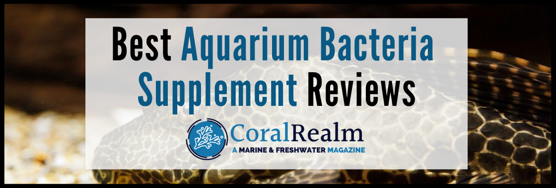 Best Aquarium Bacteria Supplement Reviews
