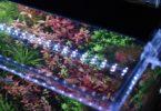 Finnex Planted+ 24/7
