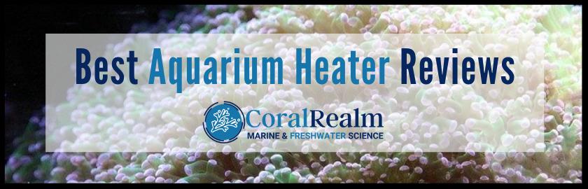 Best Aquarium Heater Reviews